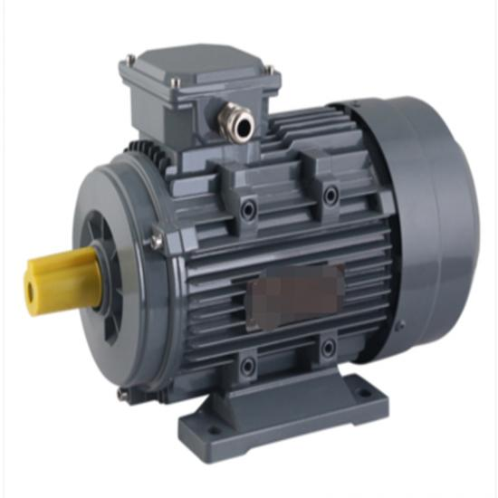 Flameproof Electric Motor